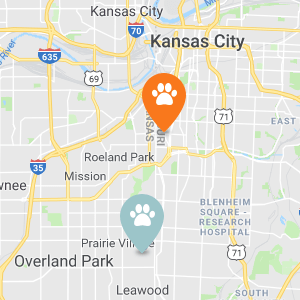Dog Pawz locations